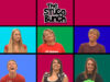 2010-08-firstassembly-stucobunch