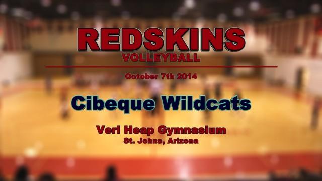 2014-10-volleyball-cibeque